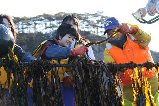 末崎中学校のわかめ養殖総合学習の支援を続ける南浜わかめ養殖組合