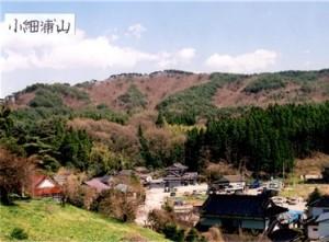 小細浦山(お伊勢山)
