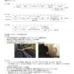 20130510_houkoku